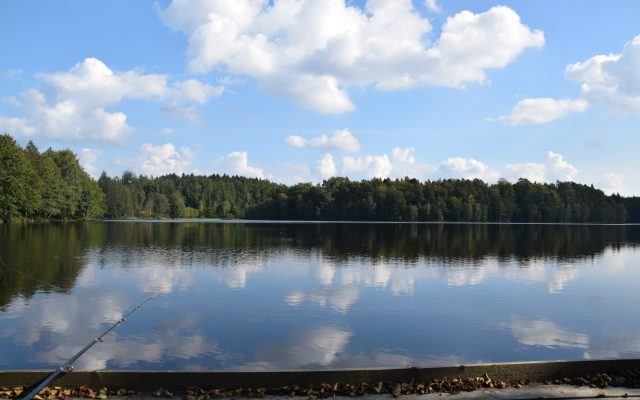 Jezioro Bukowskie 1