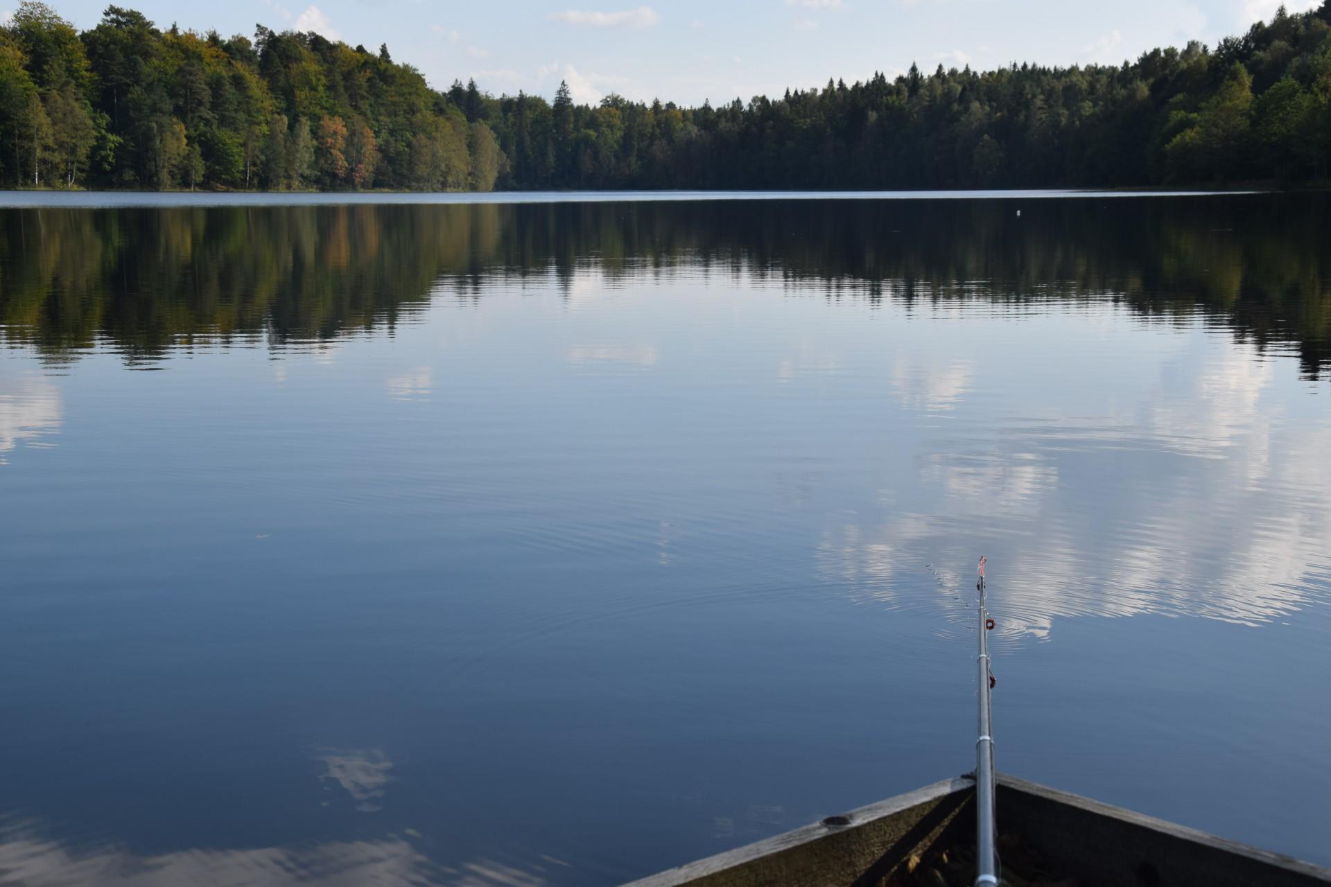 Jezioro Bukowskie 5