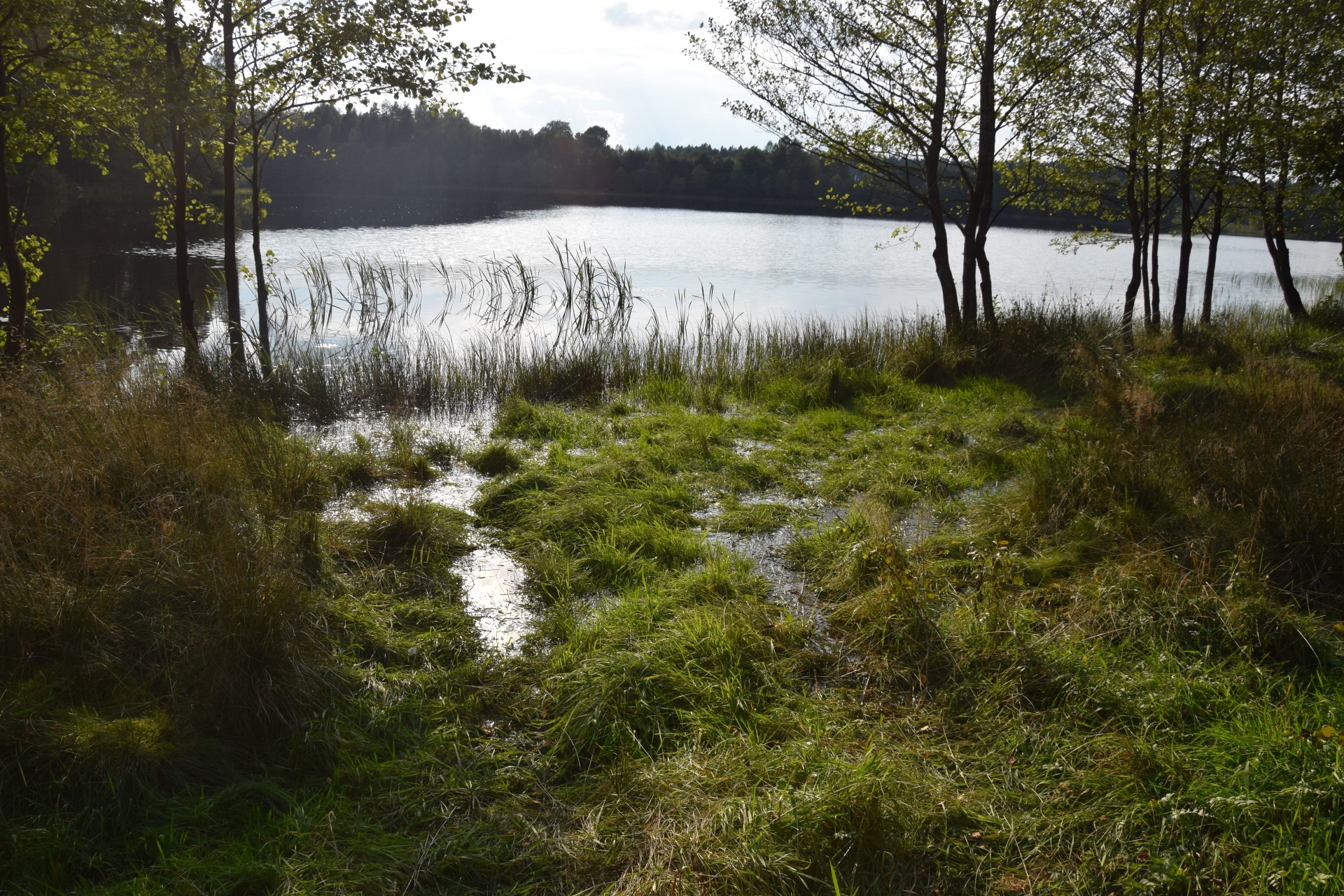Jezioro Bukowskie 6