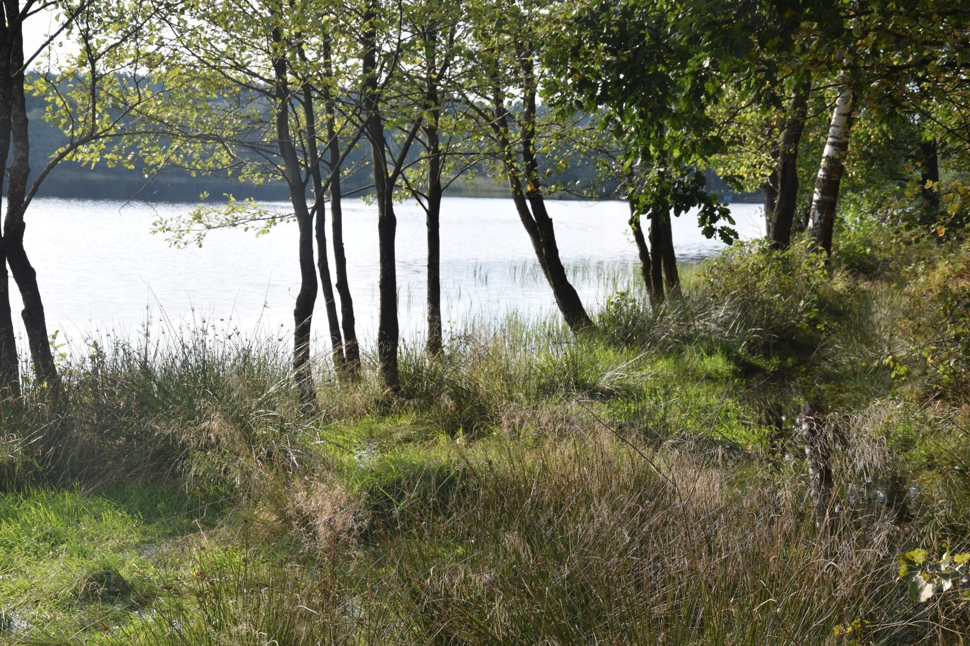 Jezioro Bukowskie 7