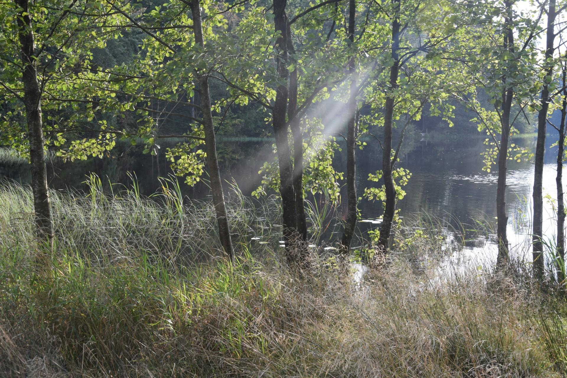 Jezioro Bukowskie 8