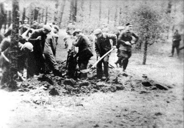 Kaszubi i volkslista. Wehrmacht czy Stutthof? 3