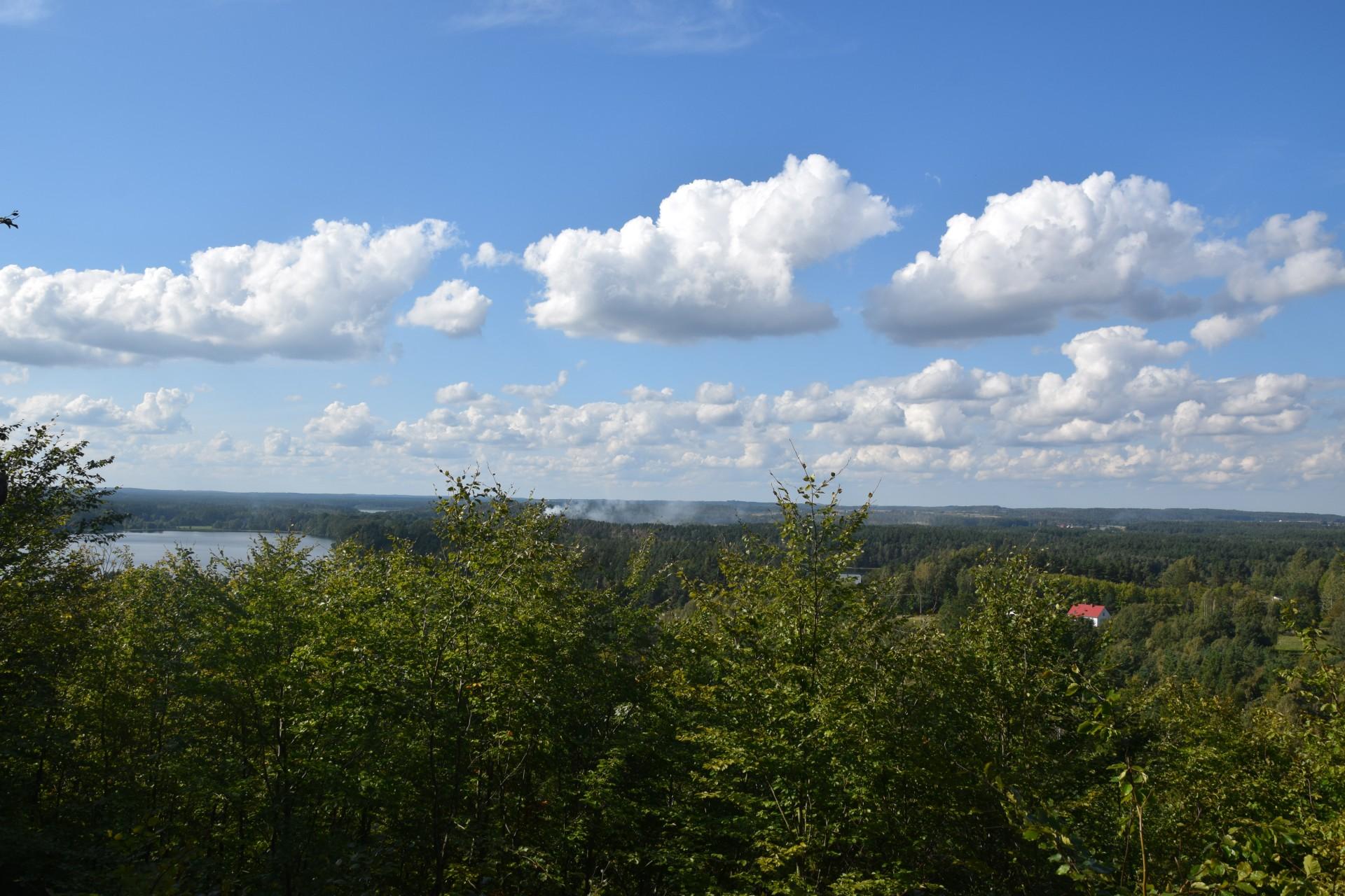 Przewodnik Magazynu Kaszuby: Lasy Mirachowskie 9