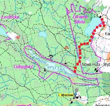 Przewodnik Magazynu Kaszuby: Lasy Mirachowskie 21