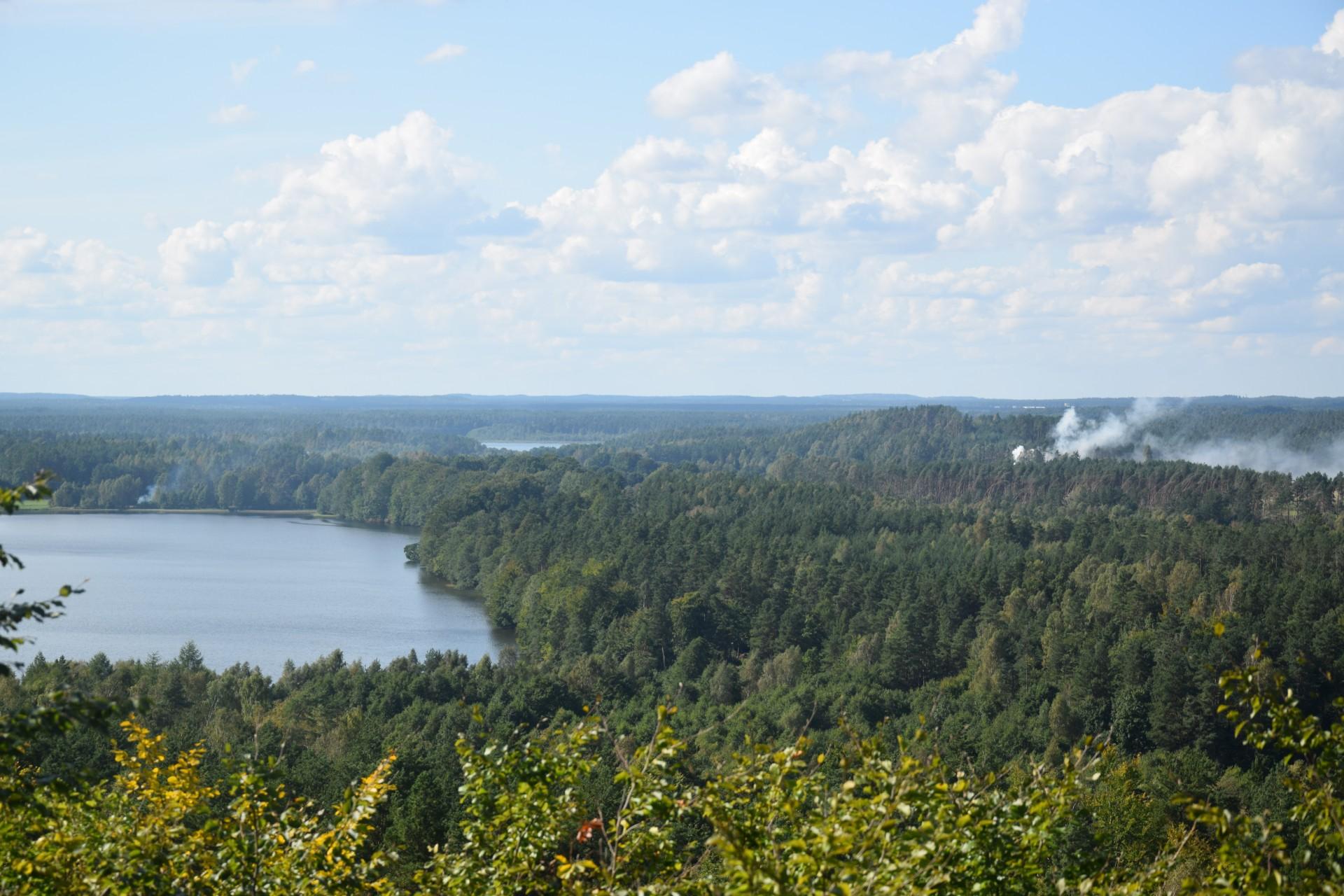 Przewodnik Magazynu Kaszuby: Lasy Mirachowskie 7