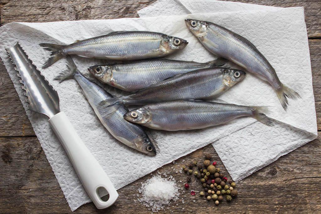 Hurtownia ryb - Royal Seafood, lider w branży importu ryb, krewetek, owoców morza. 3