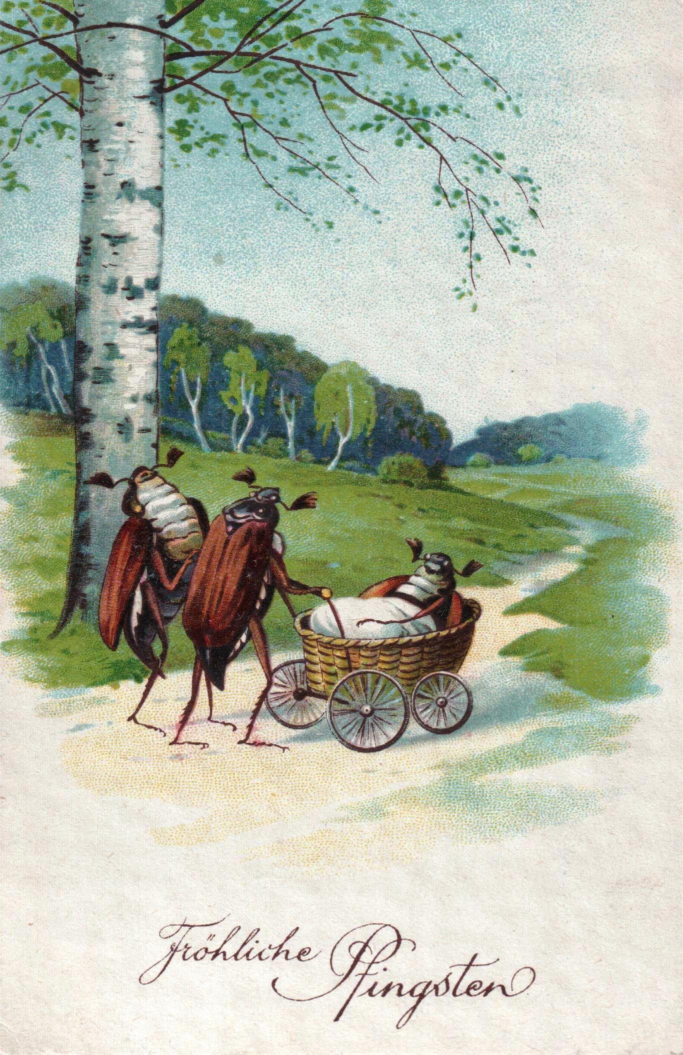 Niezwykła pocztówka [ARCHIWALNE KARTY - GALERIA] 11