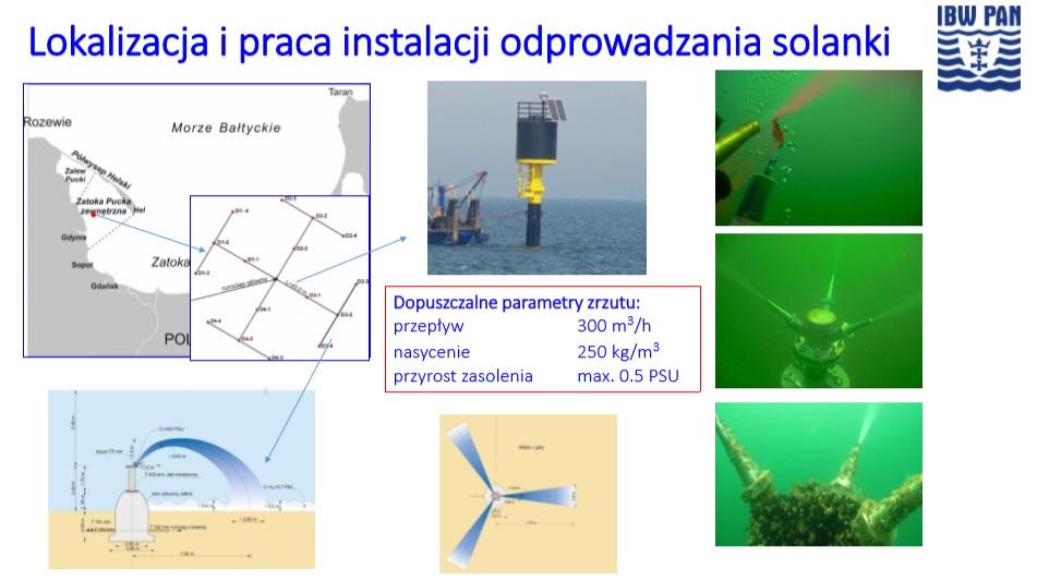 """""""Solanka w Zatoce Puckiej nie szkodzi"""". """"Nie wierzymy"""" 1"""
