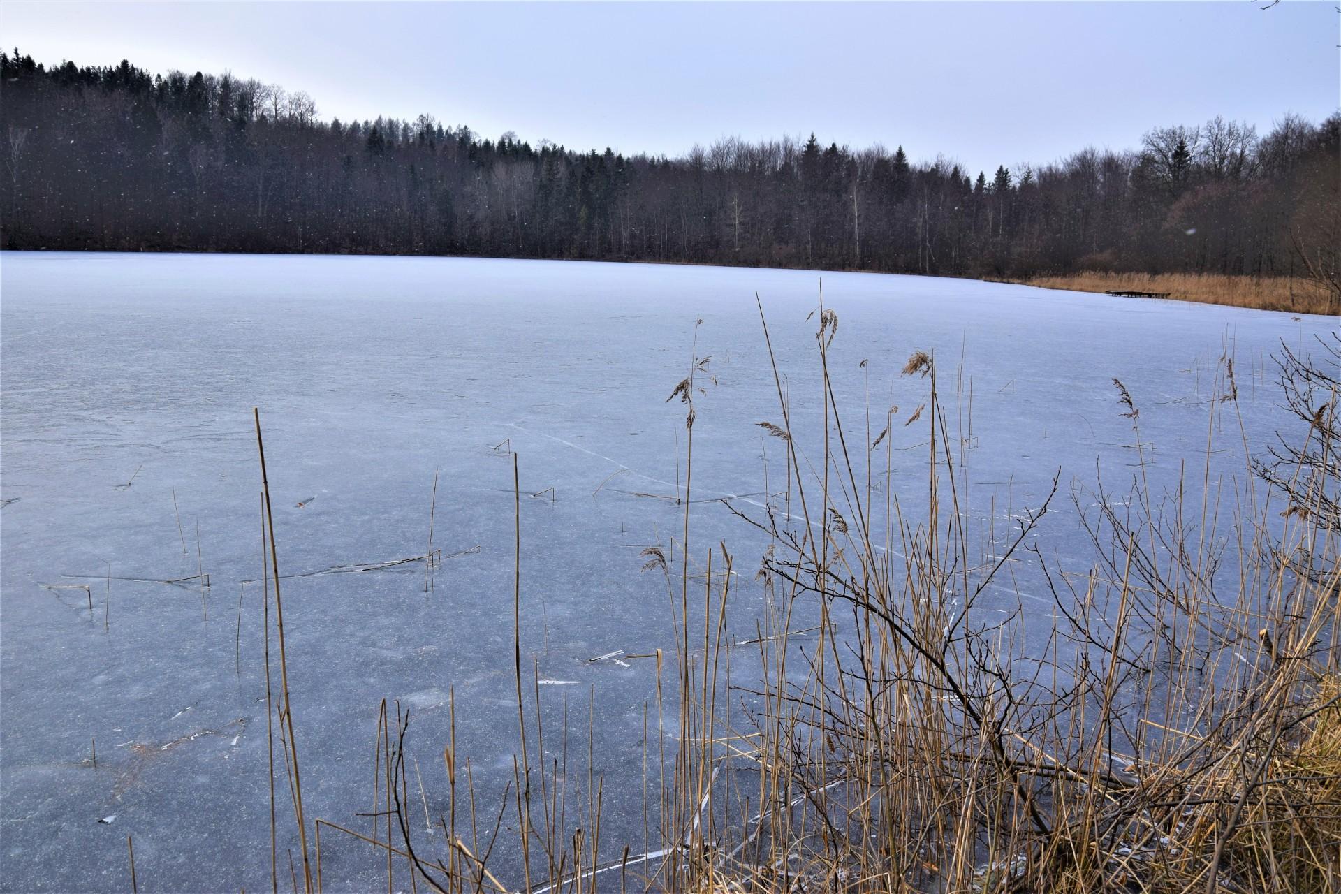 Jezioro Ciche k. Kartuz - otwieramy gęby w nabożeństwie 4