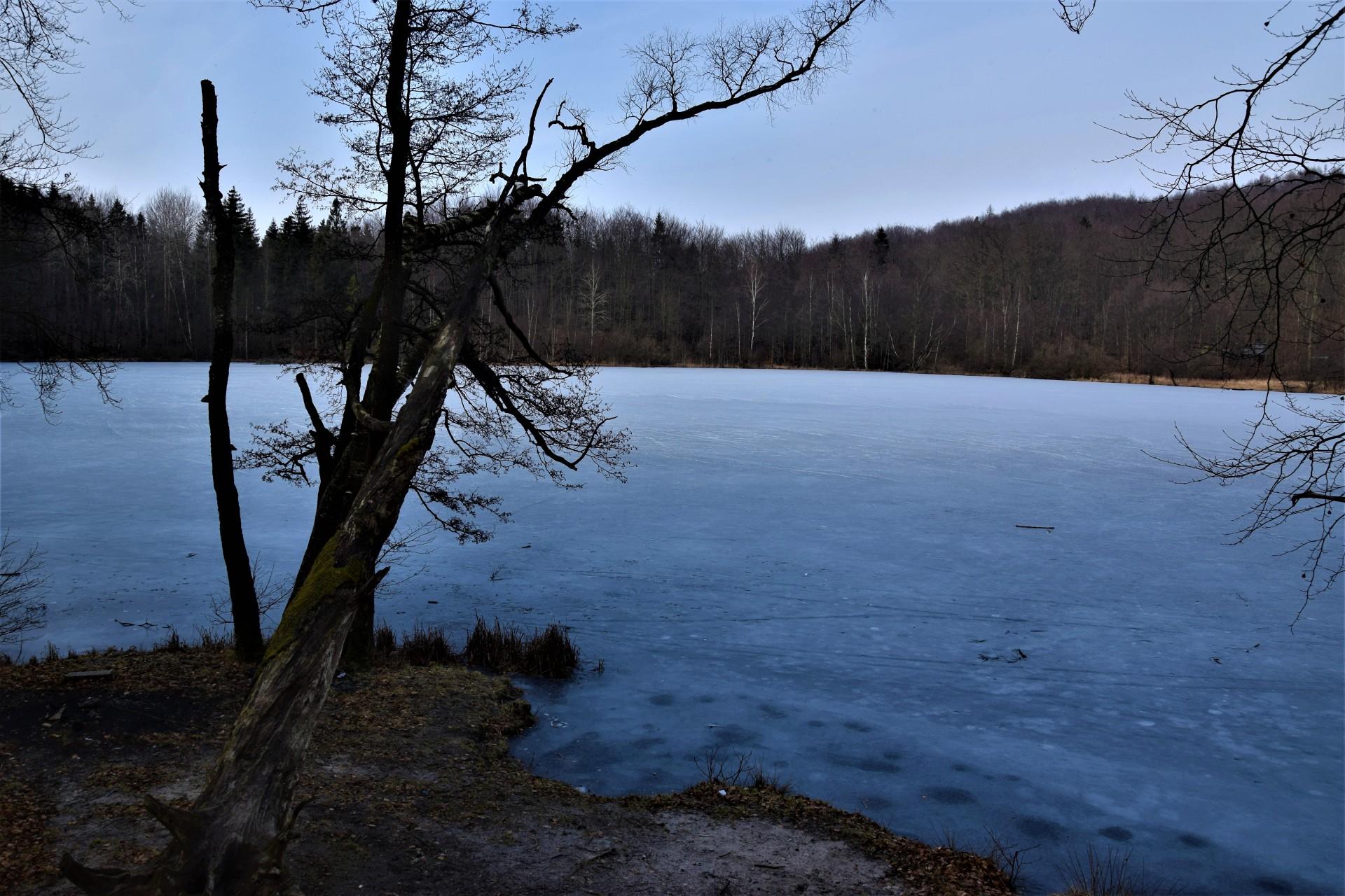 Jezioro Ciche k. Kartuz - otwieramy gęby w nabożeństwie 5