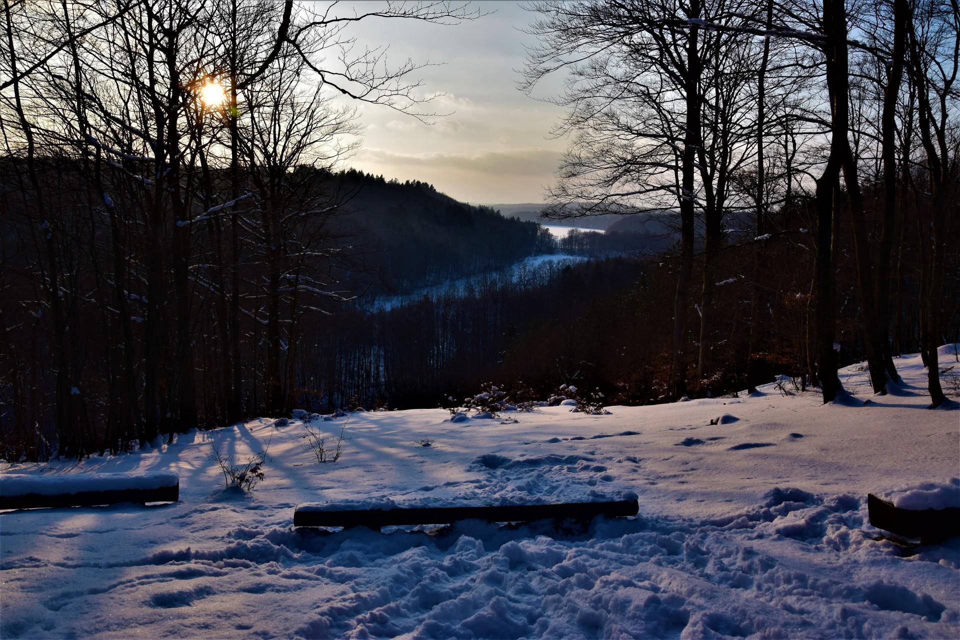 Lasy Mirachowskie zimą czyli Buschcraft w wersji light 9