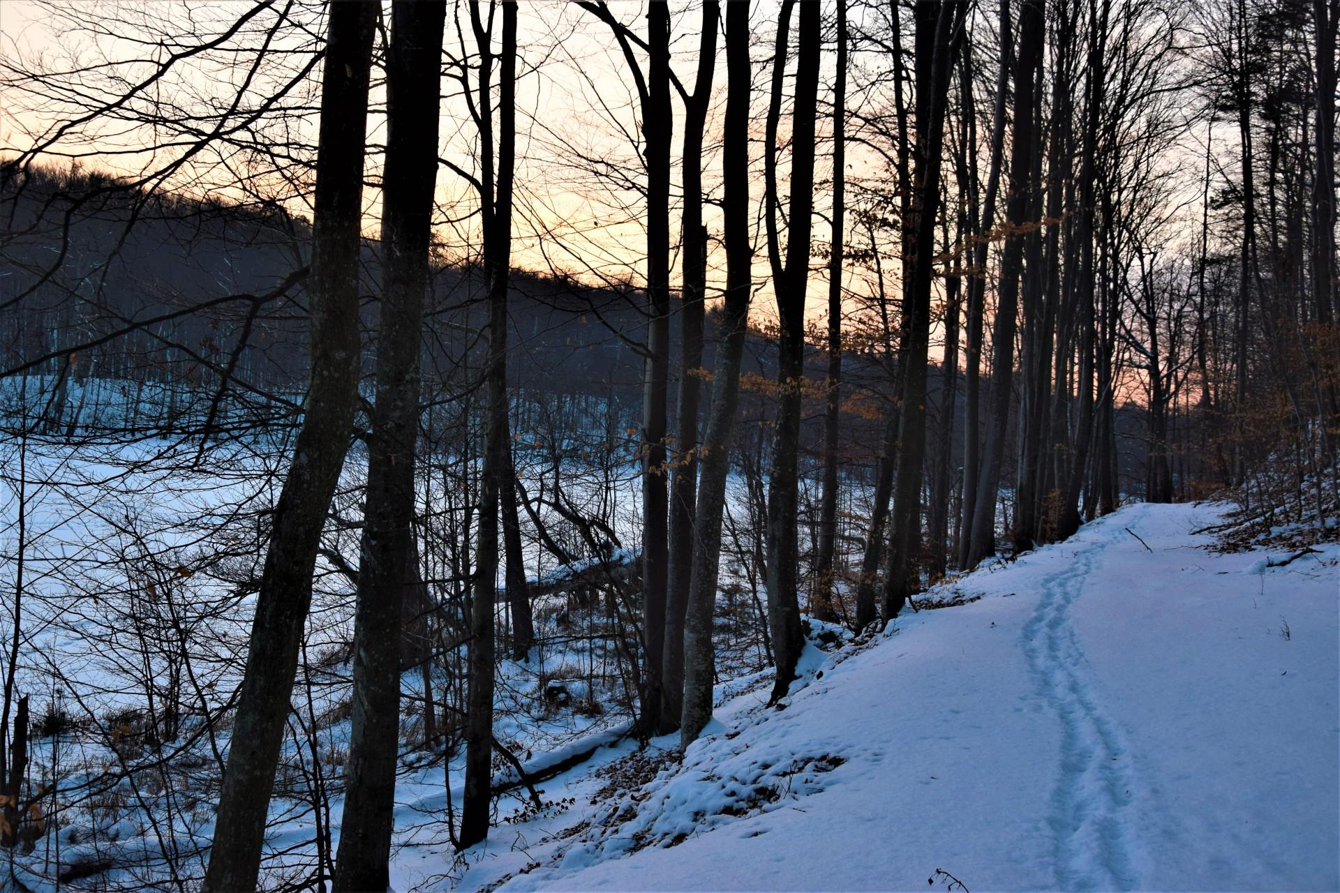 Lasy Mirachowskie zimą czyli Buschcraft w wersji light 10