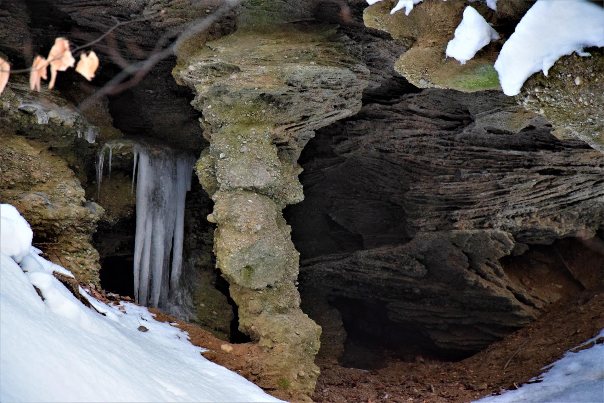 Lasy Mirachowskie zimą czyli Buschcraft w wersji light 11