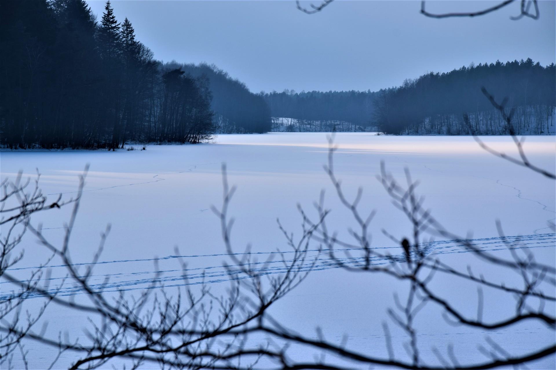 Lasy Mirachowskie zimą czyli Buschcraft w wersji light 5