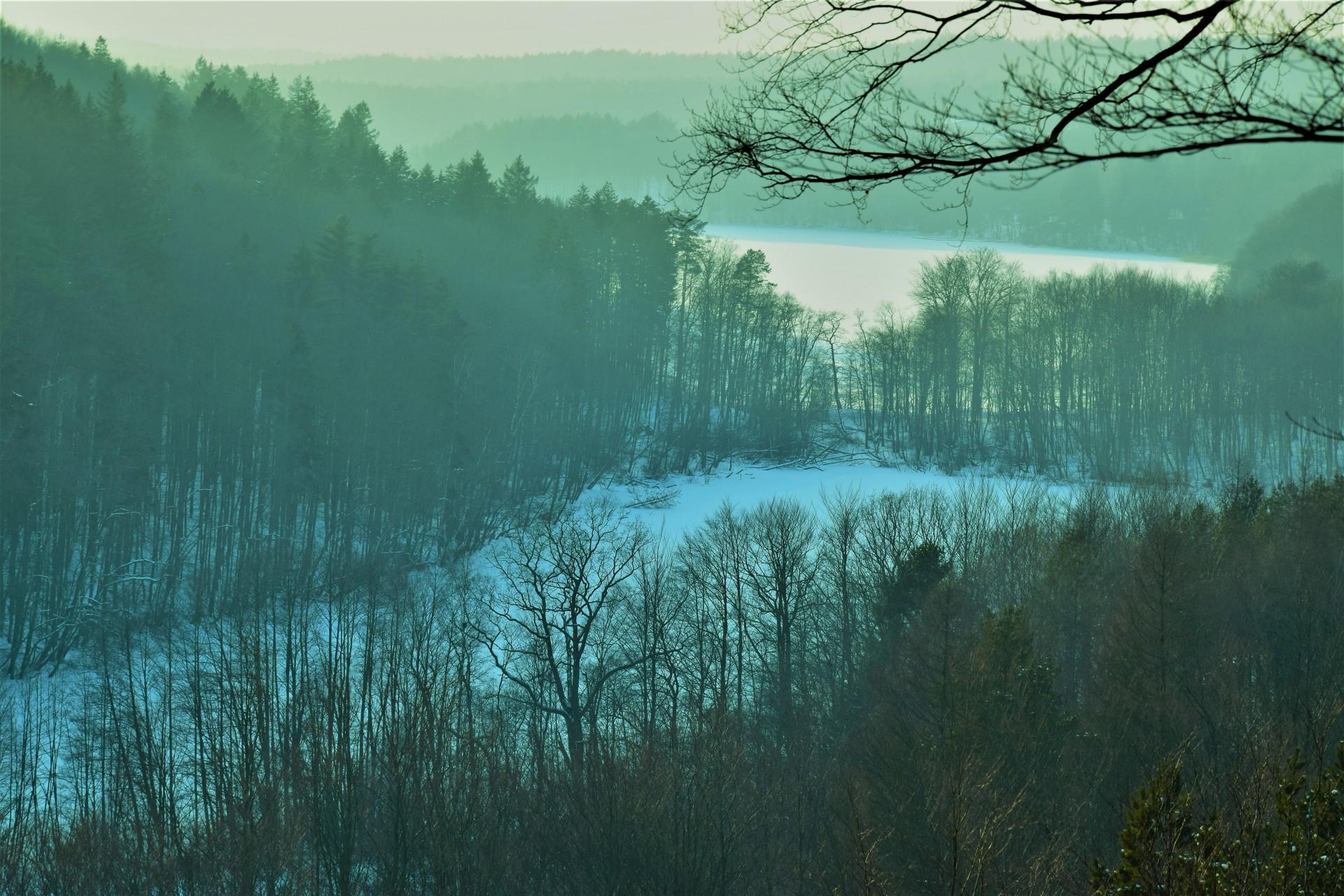 Lasy Mirachowskie zimą czyli Buschcraft w wersji light 8