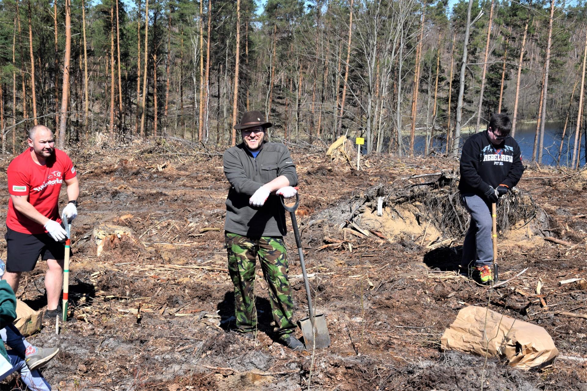 Dziemiany. Wielkie sadzenie drzew po nawałnicy 6