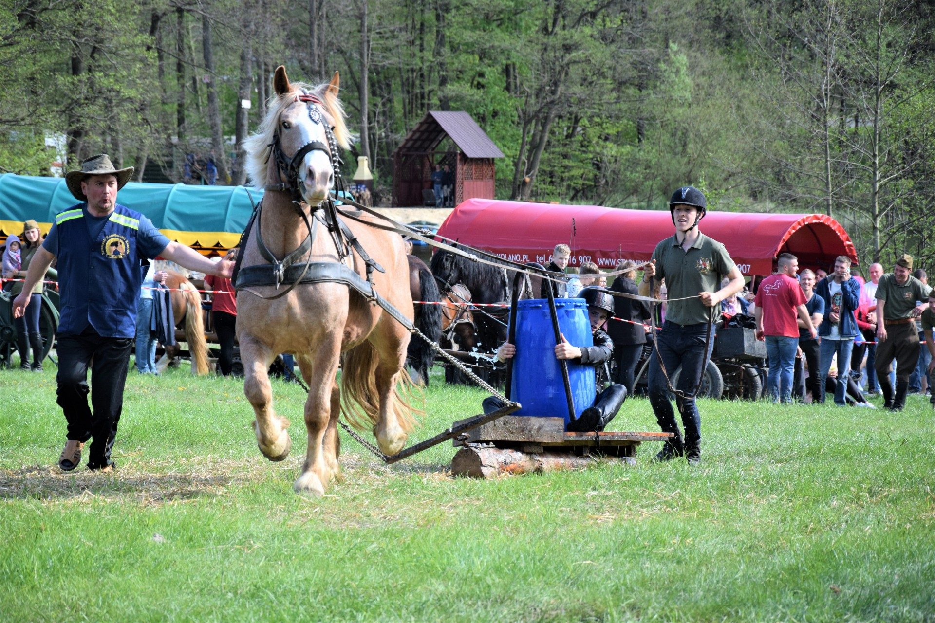Konie, Kaszuby, Wiśta wio! Zawody w Ostrzycach [FOTOREPORTAŻ] 23