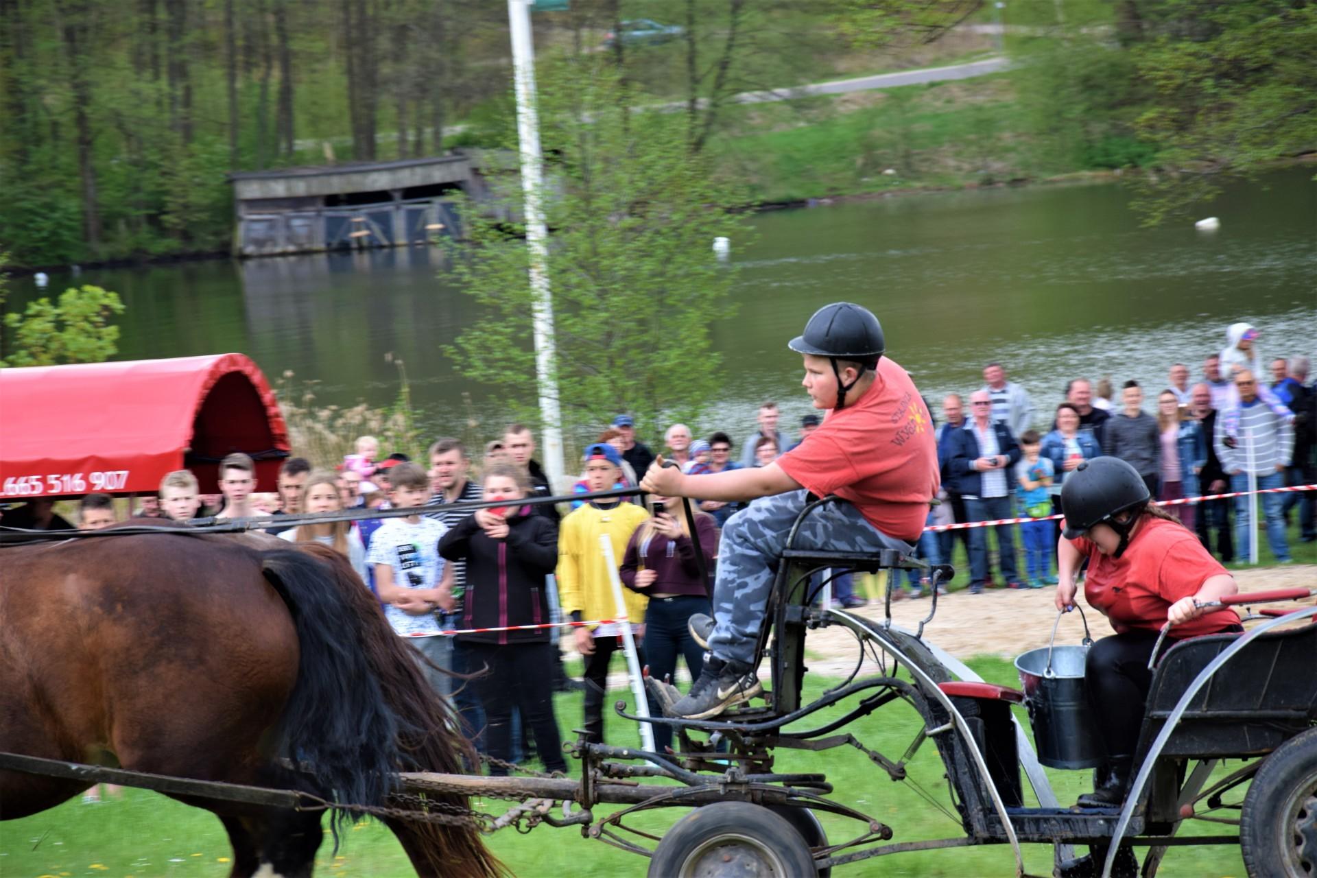 Konie, Kaszuby, Wiśta wio! Zawody w Ostrzycach [FOTOREPORTAŻ] 4