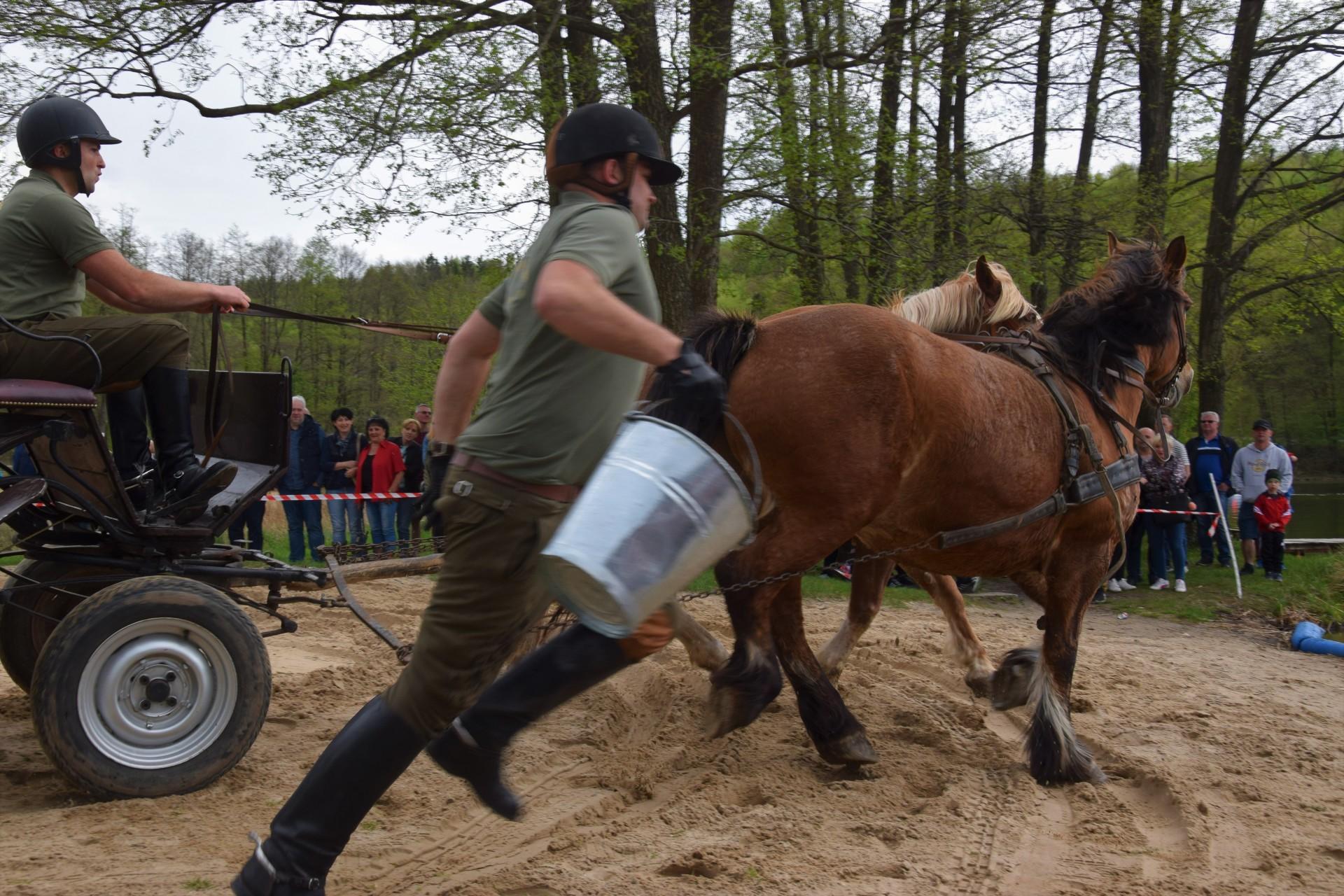Konie, Kaszuby, Wiśta wio! Zawody w Ostrzycach [FOTOREPORTAŻ] 5