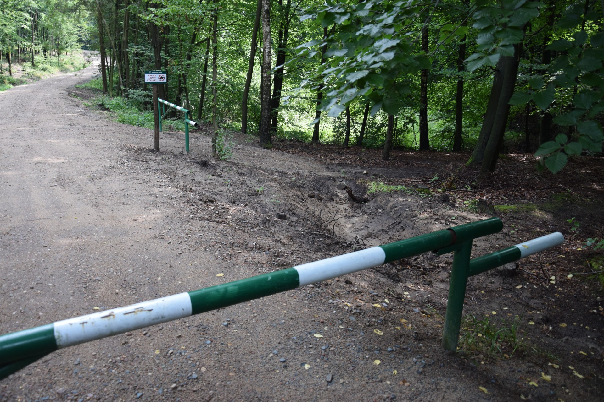 Zakaz jazdy konnej w Konnej Stolicy Polski 2