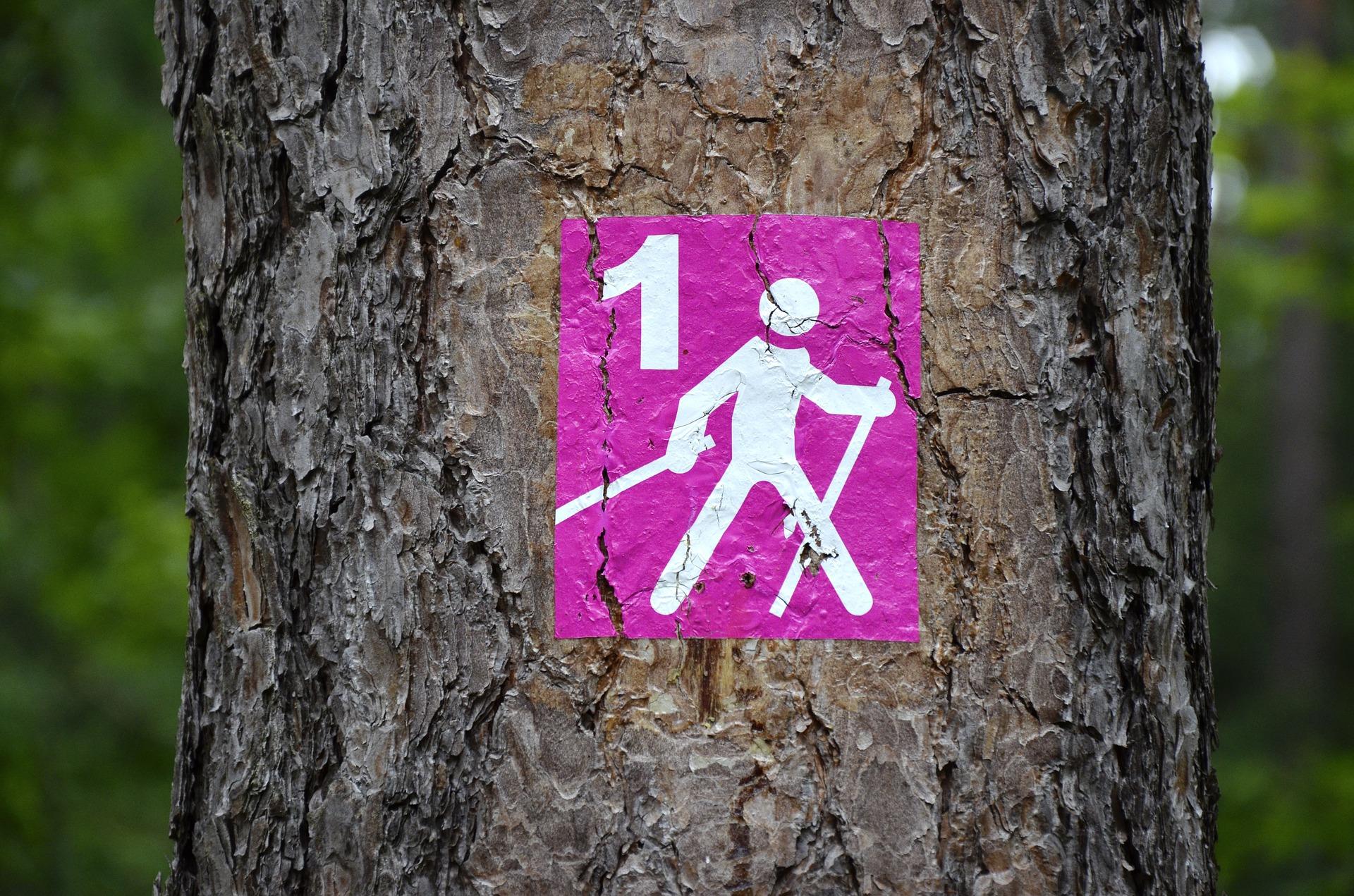 Władysławowo - poznaj 5 powodów, dla których musisz tam pojechać jeszcze w tym roku 4