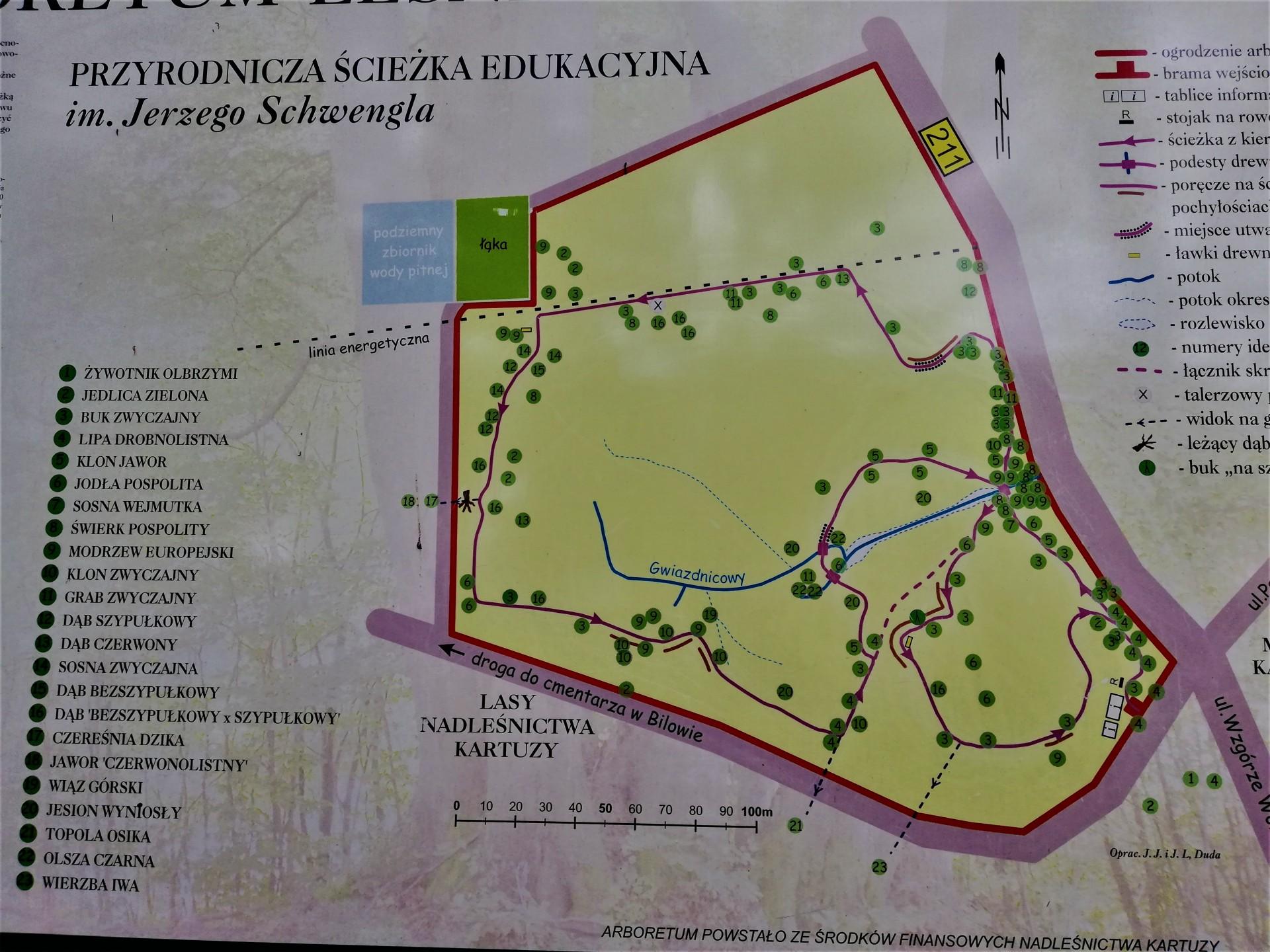 Na grzyby w okolice Kartuz. Fot. Tomasz Słomczyński/Magazyn Kaszuby