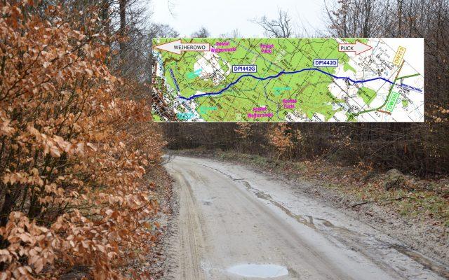 Budowa drogi przez Puszczę Darżlubską - zielone światło od samorządu