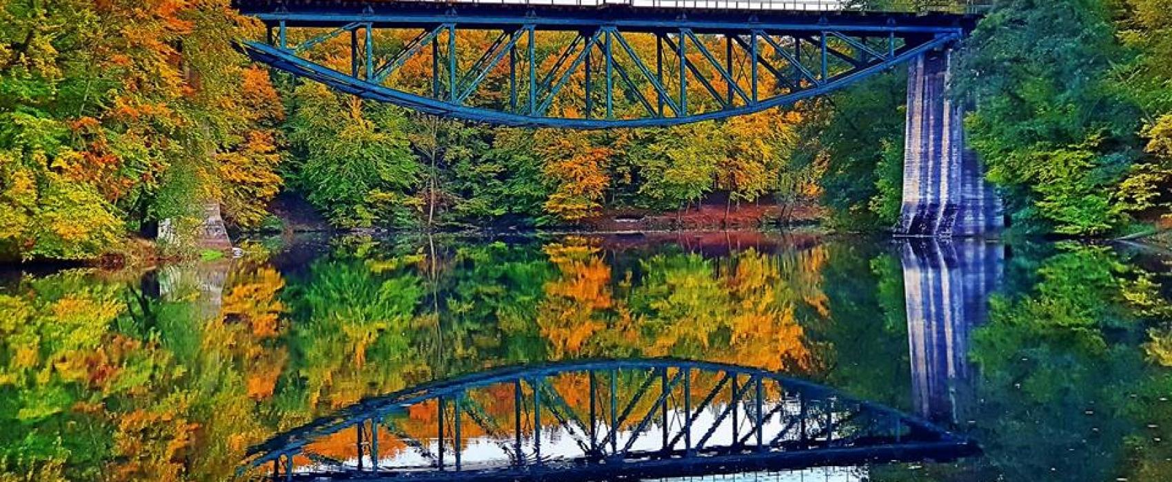 Jesień na Kaszubach - widoki, które trzeba zobaczyć [FOTOGALERIE, MAPY]