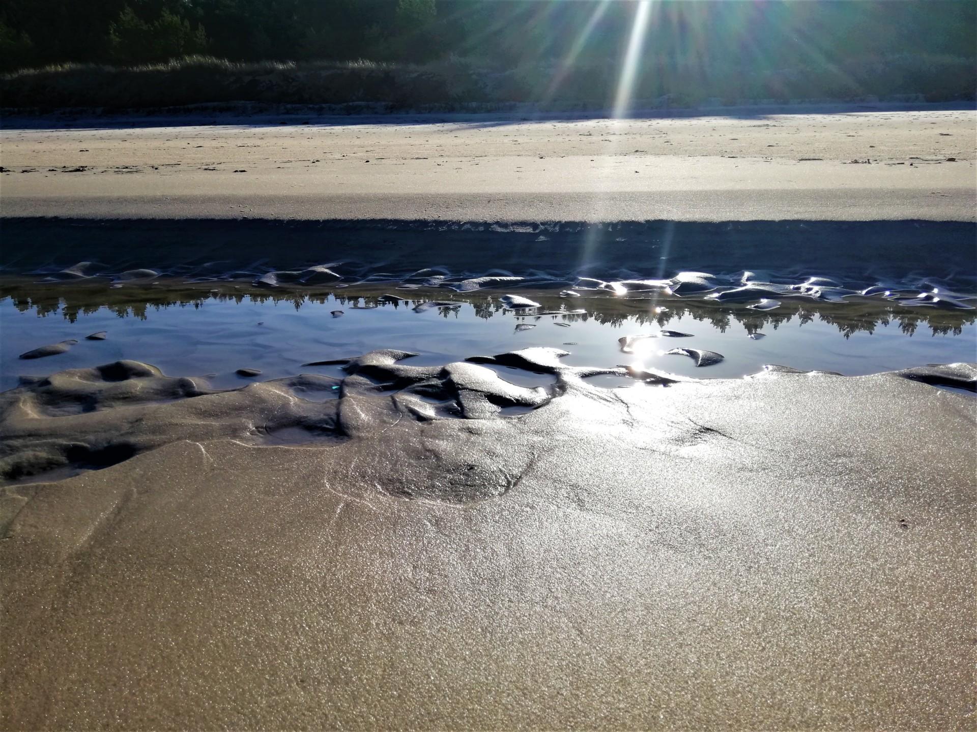 Plaża we władaniu przyrody. Lubiatowo - Kopalino, listopad 2019 11