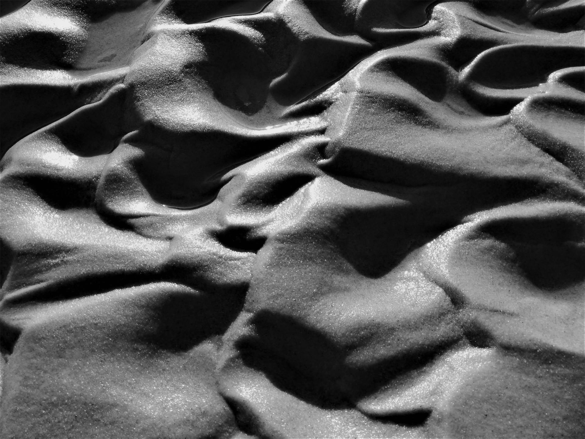 Plaża we władaniu przyrody. Lubiatowo - Kopalino, listopad 2019 13