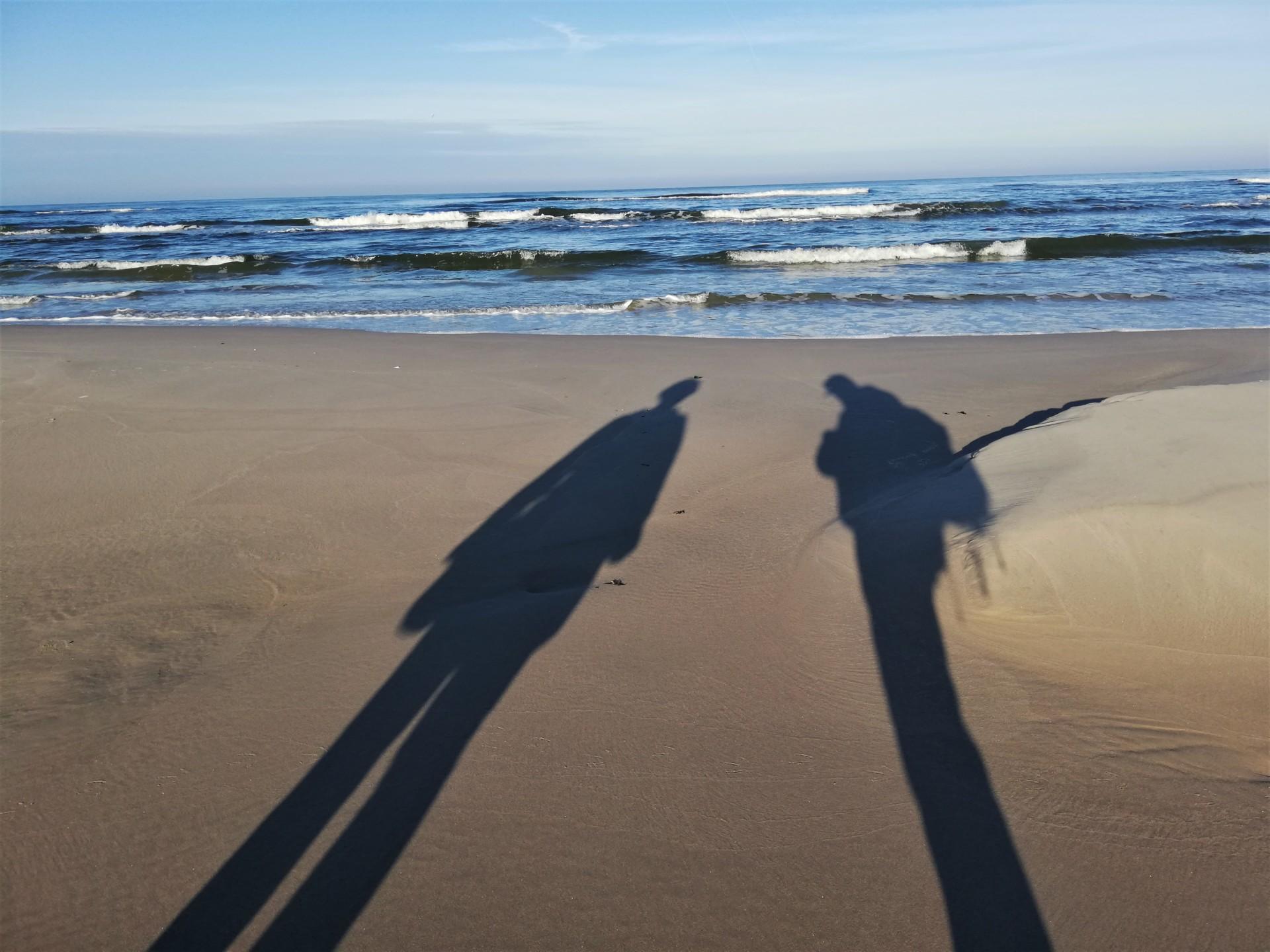 Plaża we władaniu przyrody. Lubiatowo - Kopalino, listopad 2019 2
