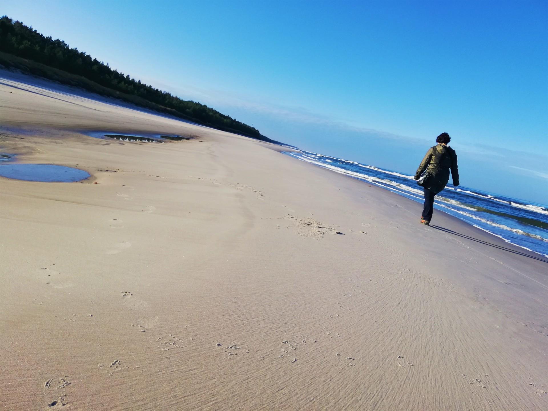 Plaża we władaniu przyrody. Lubiatowo - Kopalino, listopad 2019 4