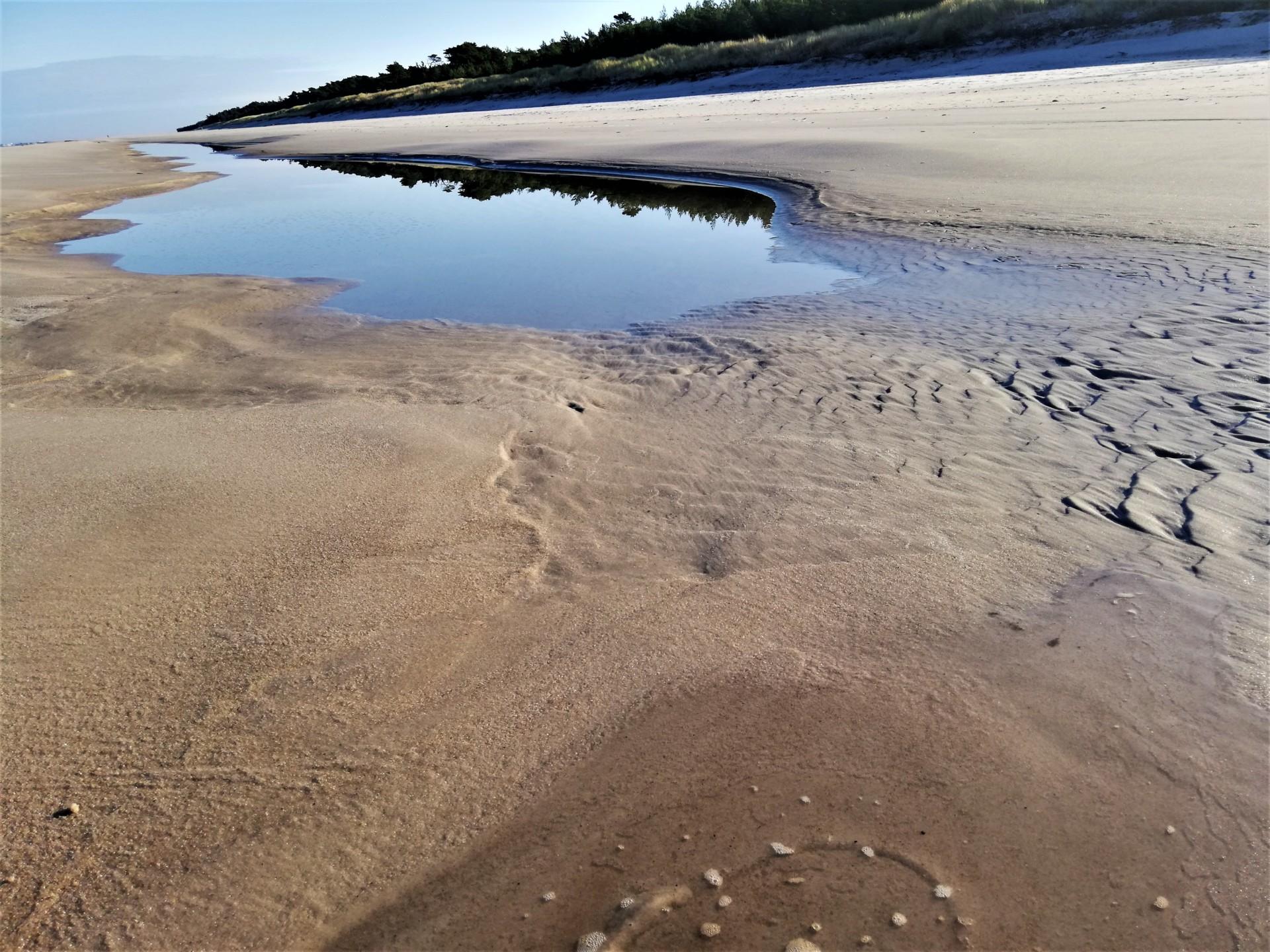 Plaża we władaniu przyrody. Lubiatowo - Kopalino, listopad 2019 5