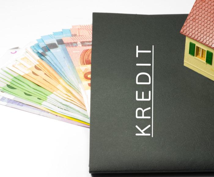 Raport bik a zdolność kredytowa