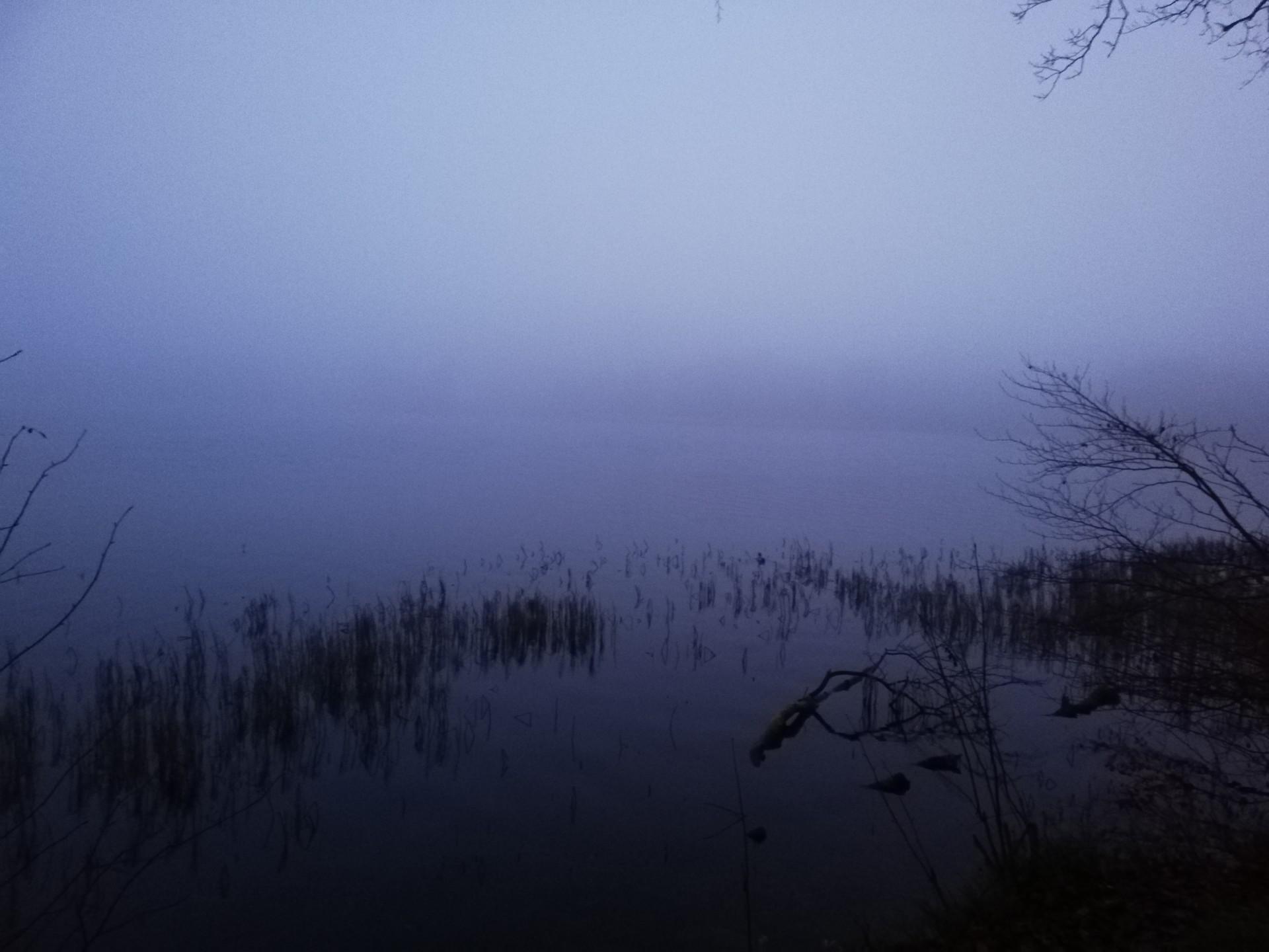 Mgła [FELIETON] 1