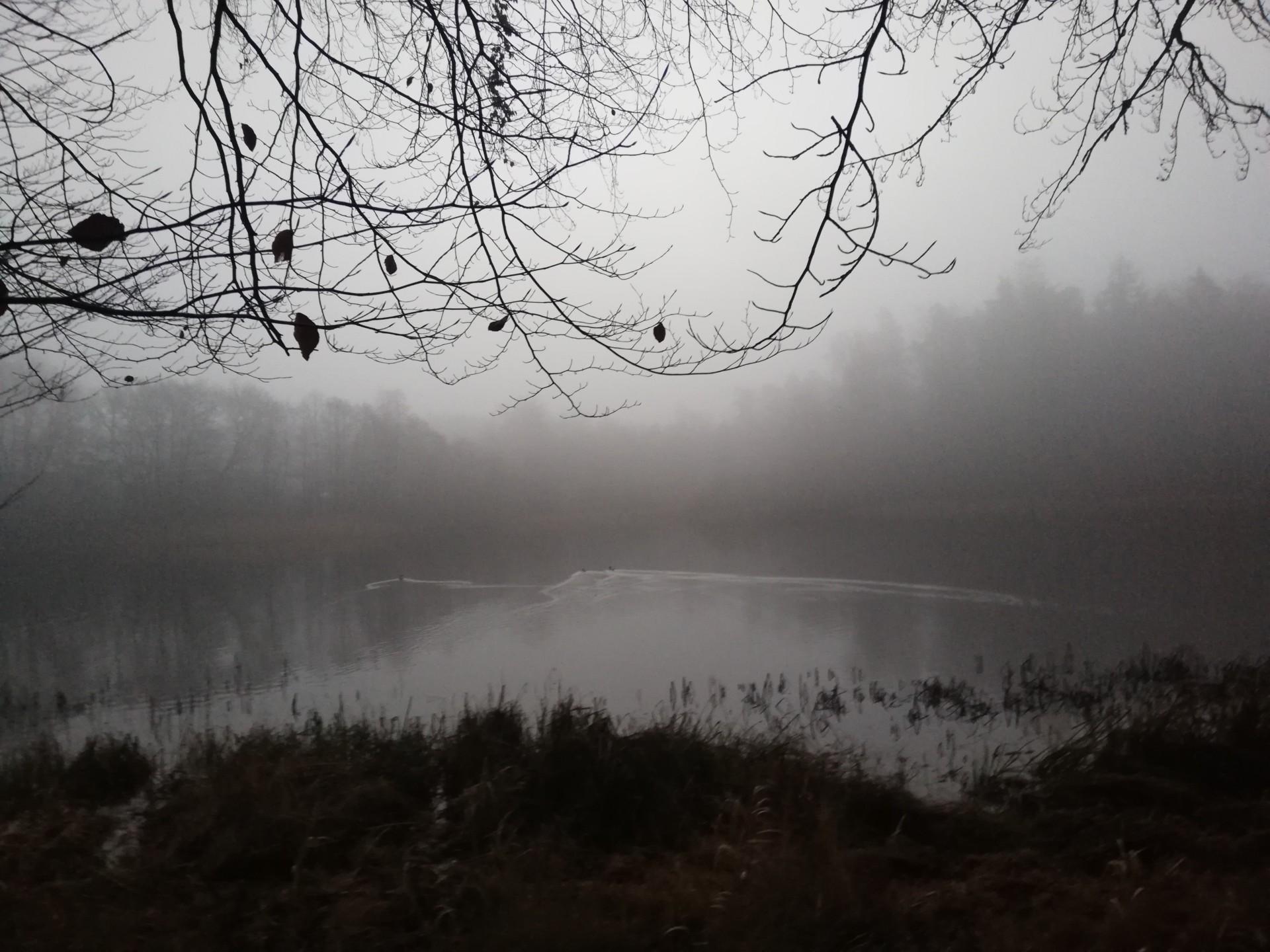 Mgła [FELIETON] 2